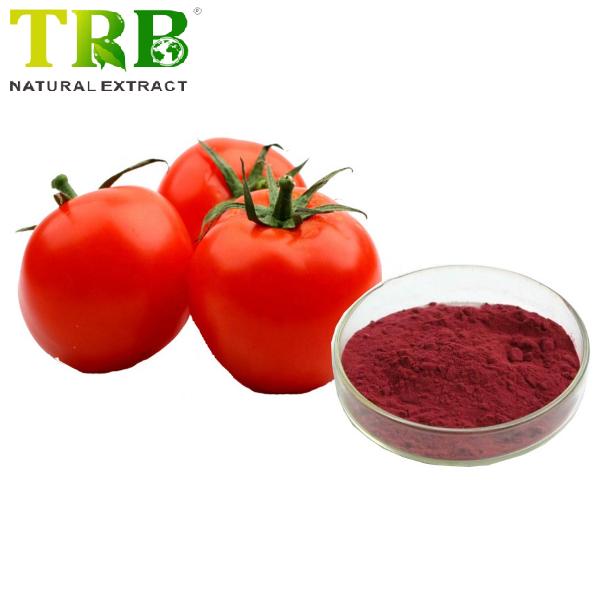 Tomato Juice Powder Featured Image