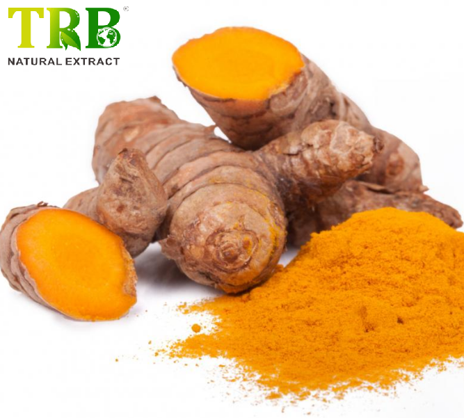 Excellent quality Tongkat Ali Root Extract 1 200 - Curcumin 95% – Tong Rui Bio Featured Image