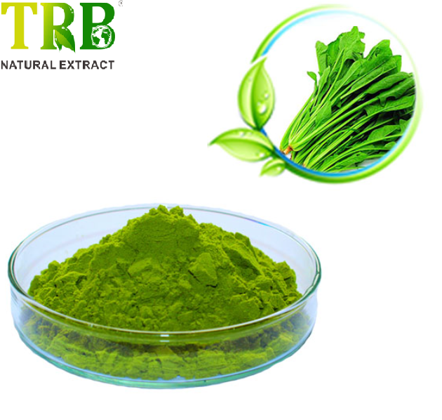 Spinach Powder Featured Image