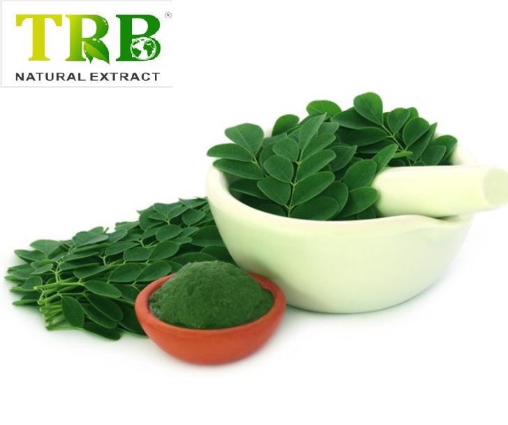 Moringa oleifera extract Featured Image