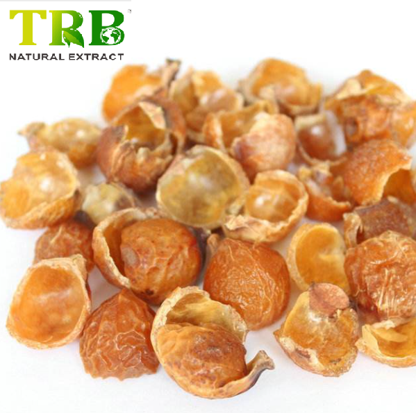 Soapnut Extract Featured Image