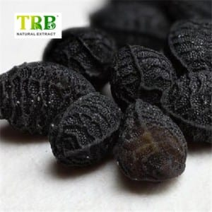 Black Seed extract/Nigella sativa extract