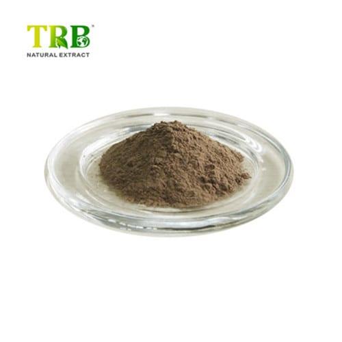 boswellia-serrata-extract-500x500