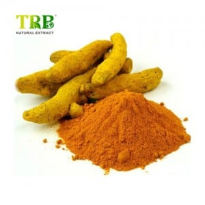 Curcuma Longa Extract / Tumeric Root Extract