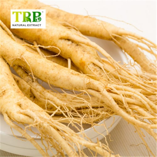 High Performance Magnesium L-Threonate Sleep - Ginseng Root Extract Ginsenoside80% – Tong Rui Bio Featured Image