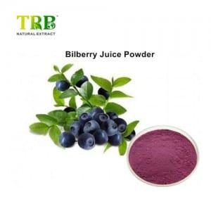 Bilberry Fruit Juice powder
