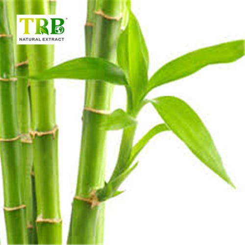 Best-Selling Black Cohosh Extract Powder - OEM/ODM China 100% Natural Bamboo Leaf Extract Powder 70% Silica / Garcinia Multiflora Champ Extract 10:1 – Tong Rui Bio