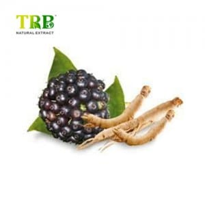 Super Lowest Price Alpha Lipoic Acid - Siberian Ginseng Root Extract – Tong Rui Bio