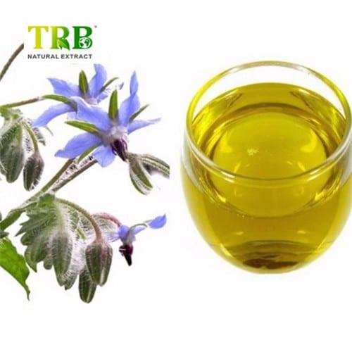 OEM/ODM China Best Cordyceps Extract - Borage Oil – Tong Rui Bio