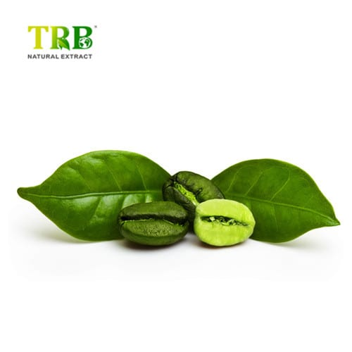 Green Coffee Bean Extract Featured Image