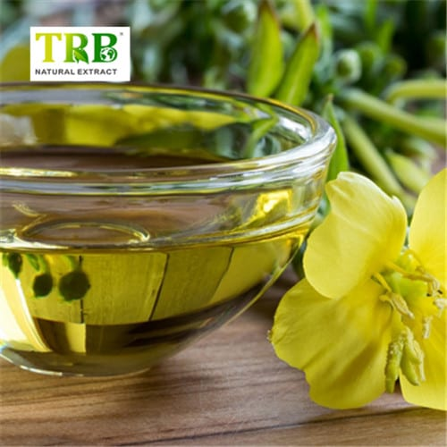 Lowest Price for Seaweed Kelp Extract For Plants - Evening Primrose Oil – Tong Rui Bio