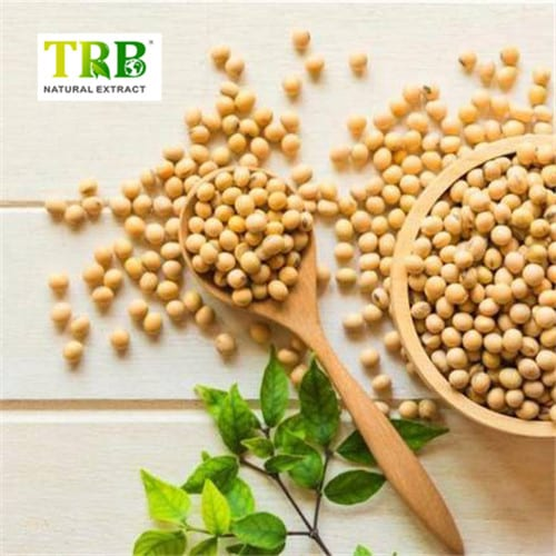 Soybean Extract Featured Image