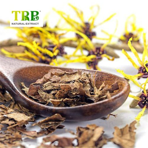 Reasonable price for Celery Seed And Olive Leaf Extract - Hamamelis Extract – Tong Rui Bio