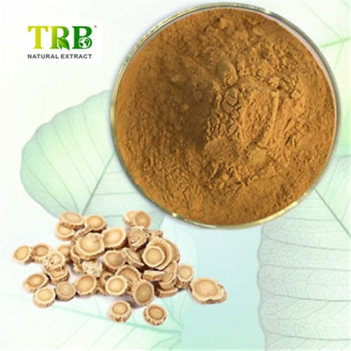 Astragalus-Root-Extract-Powder-High-Quality-101-200