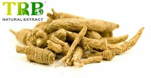 Organic Siberian Ginseng Extract 0.8% Eleutherosides