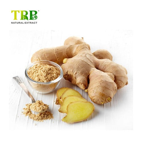 ginger-extract-500x500