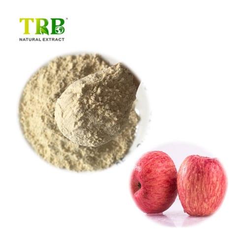 Apple fruit juice powder Featured Image
