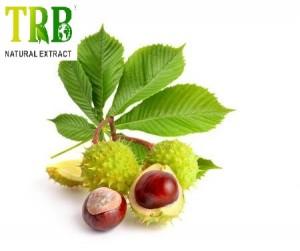 Organic Horse Chestnut Extract 20.0% Aescin