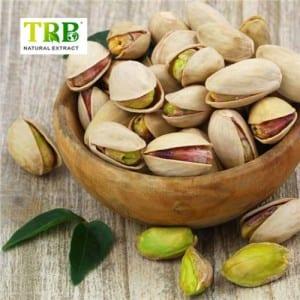 Kola Nut Extract