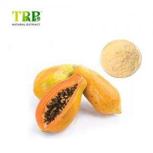 Papaya fruit juice powder