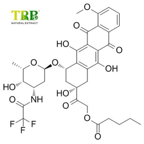 Phosphatidyl Serine 99% Featured Image