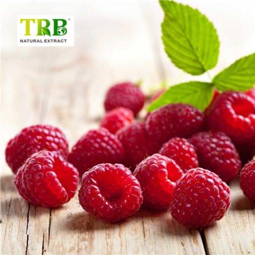 raspberry_247b38c4-ac61-486f-b2f0-2ce307711366_1024x1024