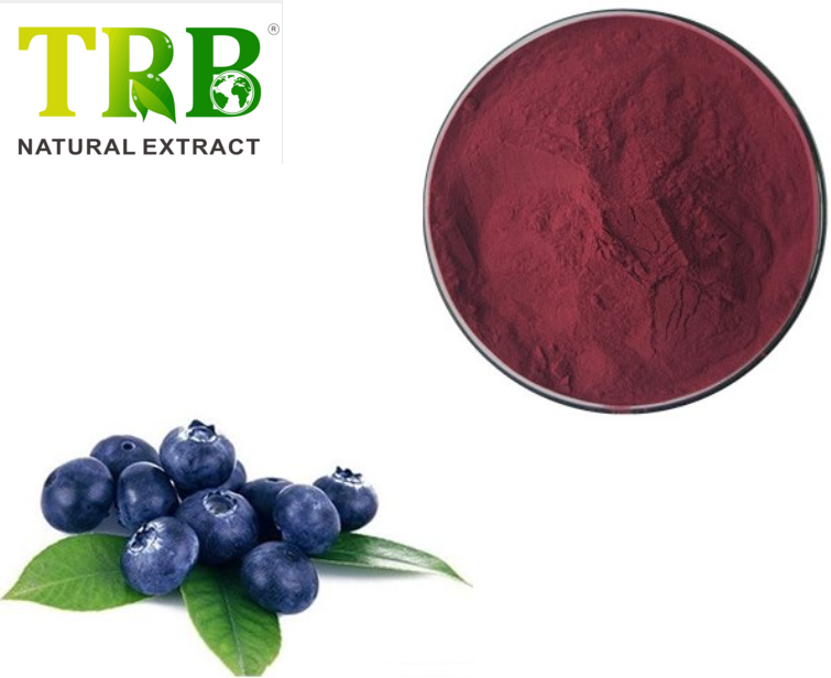 Acai Berry Extract 10% polyphenols Featured Image