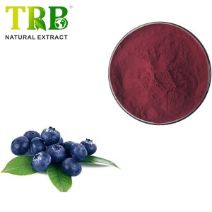 Acai Berry Extract 10% polyphenols