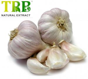 Veterinary Garlic Tablet