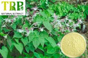 Organic Epimedium Extract 5%-98% Icariin