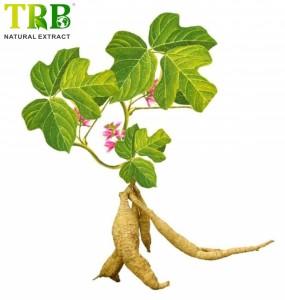 Organic Kudzu Root Extract 40.0% Isoflavones