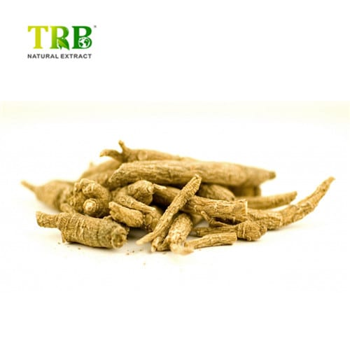 High Performance Magnesium L-Threonate Sleep - Ginseng Root Extract Ginsenoside80% – Tong Rui Bio detail pictures
