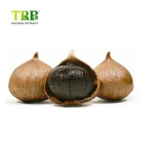 Fermented Black Garlic Extract