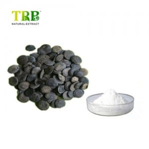 Griffonia simplicifolia seed extract / 5-HTP