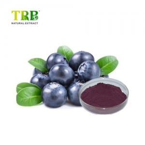 Price Sheet for China Botanical Extract Bilberry Extract 10%~25% Anthocyanidins (UV-VIS) Anti-Aging Factory Supply