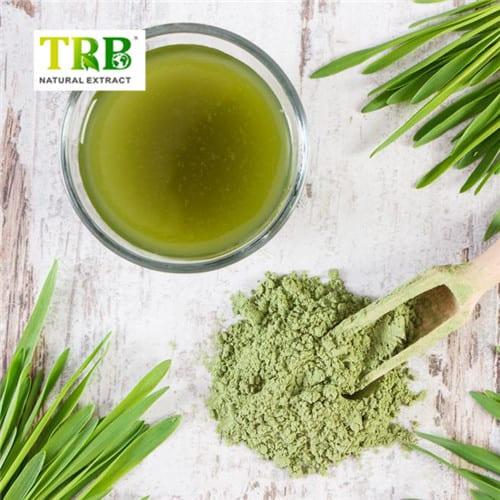 Barley Grass Juice powder Featured Image