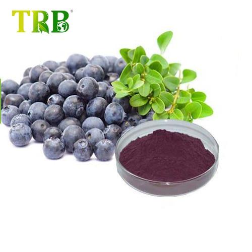 Factory Cheap Hot Epilobium Extract - Acai Berry Extract – Tong Rui Bio