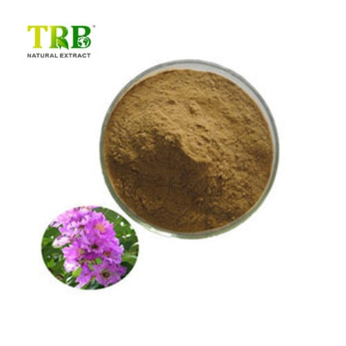 OEM China Extract De Astragalus - Banaba Leaf Extract – Tong Rui Bio