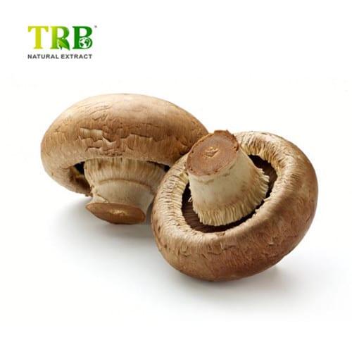 59dbaa16f56f15000140dd1d_mushrooms