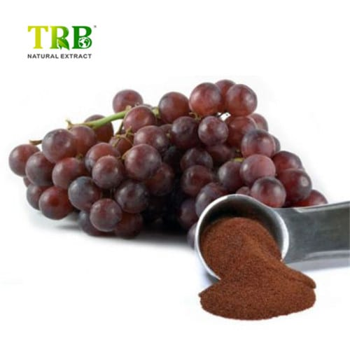 grapeseed-extract-powder