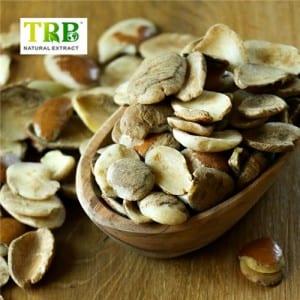 Africian Mango Extract/Irvingia Gabonensiss Seed Extract