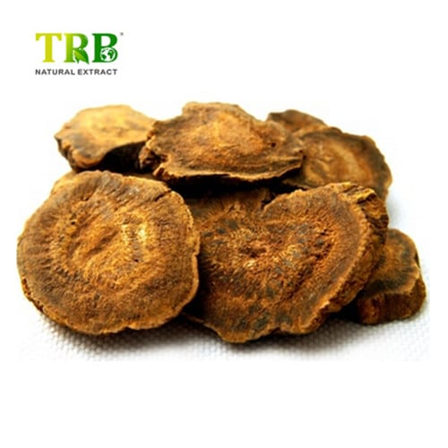 Good quality Alpha Gpc Buy - Rhubarb Extract – Tong Rui Bio