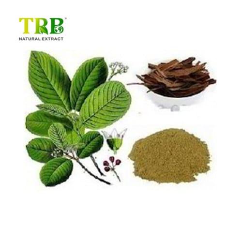 High Performance Pollen Grape Tea - Cascara Sagrada Extract – Tong Rui Bio Featured Image