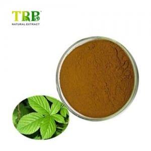 Sweet Tea Extract
