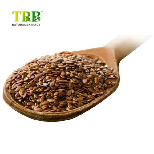8 Year Exporter Hawthorn Berry Extract Side Effects - Flaxseed Extract/Linseed Extract – Tong Rui Bio