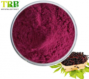 Wholesale Price China Cimicifuga Racemosa - Natural Black Elderberry Extract – Tong Rui Bio