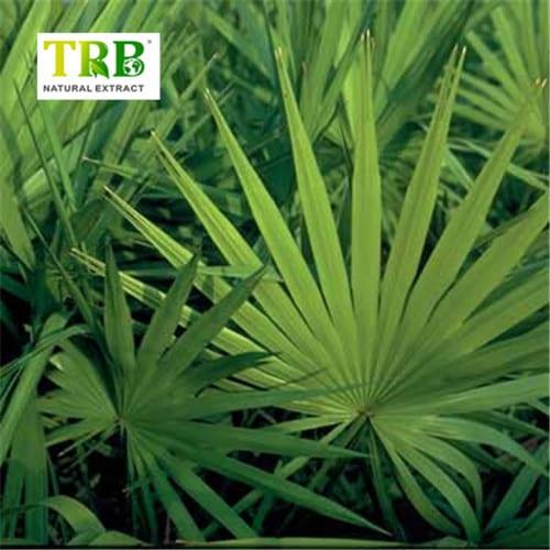 Cheapest Price Pyrroloquinoline Quinone Supplier - Saw Palmetto Extract – Tong Rui Bio
