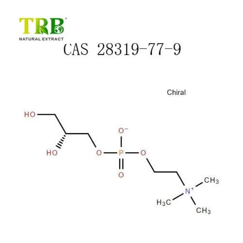 Alpha-GPC-Choline-Alfoscerate-28319-77-9-PHCOKER-600x600